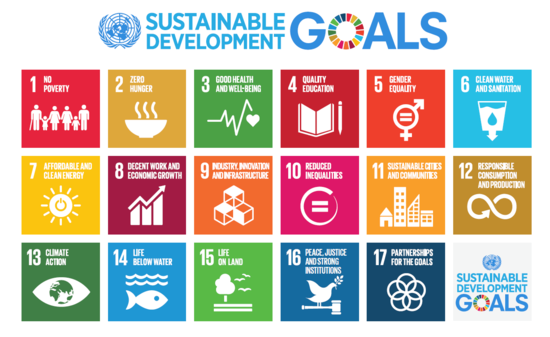 sustanable-development-goals-FINAL_01_2b1a1c0536